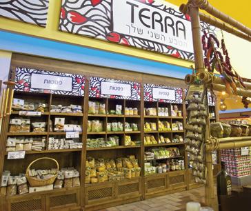 terra_food branding_p.o.s design_graphic design_all in 1
